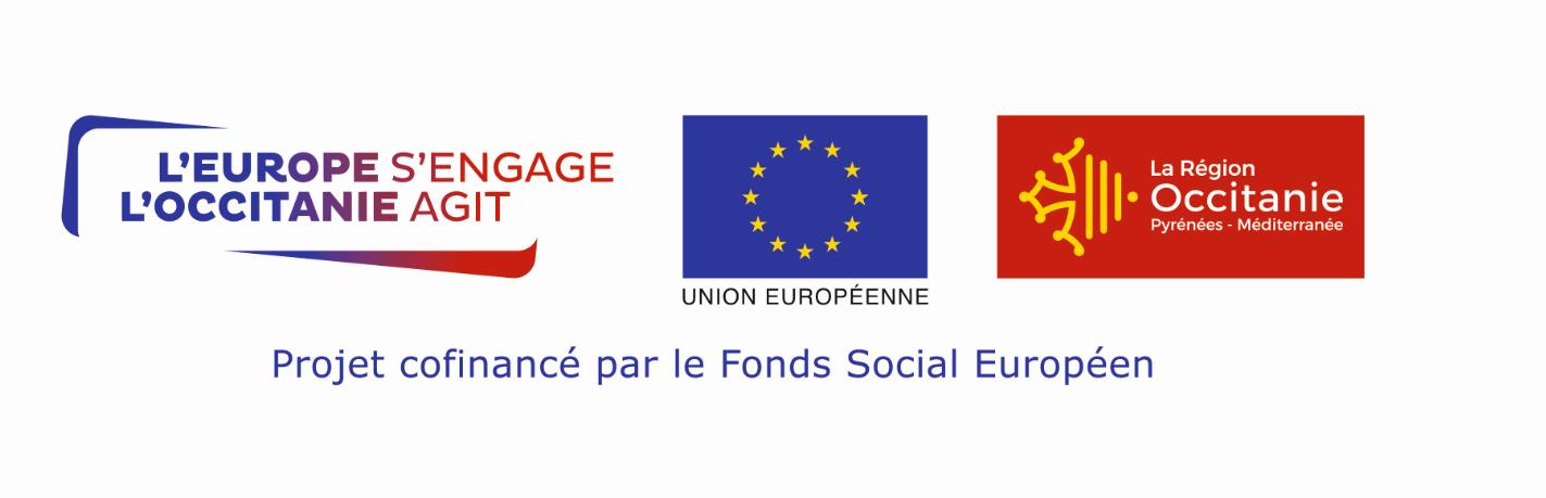Tryptique FSE nouveau logo